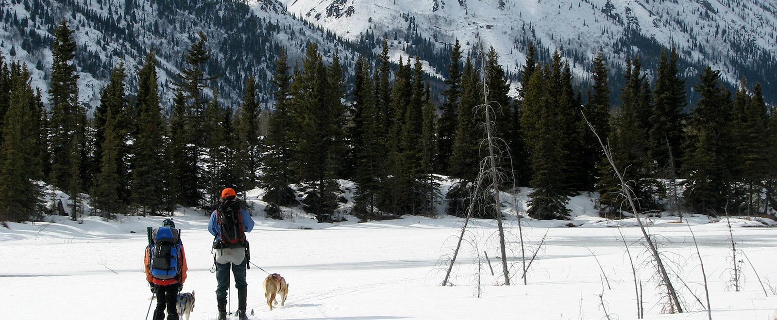 ski skiing