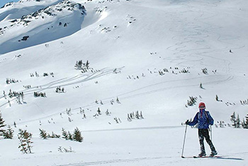 Freedom of the Hills on Skis